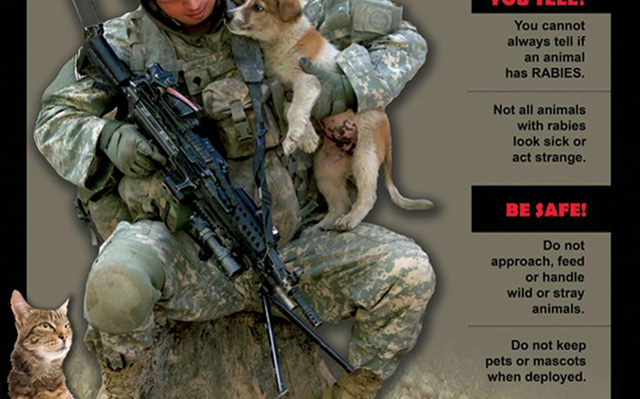 A U.S. Army poster warns of the dangers of contracting rabies from stray animals downrange.