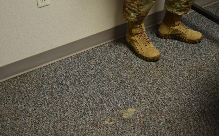 Mold is seen in the carpet of a dorm room in building 1215 at Lackland Air Force Base, Texas, on Thursday. Officials began a full review of dorm facilities following social media posts about mold in living spaces.
