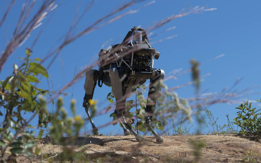 Spot, a quadruped prototype robot, walks down a hill during a demonstration at Marine Corps Base Quantico, Va.,Sept. 16, 2015. Employees of the Defense Advanced Research Projects Agency trained Marines from the Marine Corps Warfighting Lab how to operate Spot. But in December 2015, the Marines decided to shelve further research on the prototype.