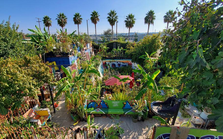 An urban garden in Los Angeles.