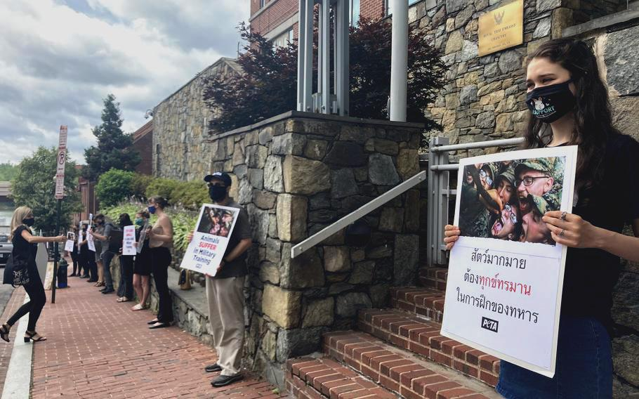 People for the Ethical Treatment of Animals on June 3, 2021, protested the killing of king cobras during the U.S.-Thai military exercise Cobra Gold. The protest took place outside the embassy of Thailand in Washington, D.C.