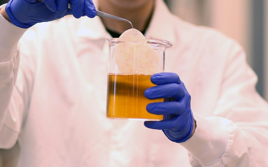 Army-funded researchers used SCOBY, a byproduct of the fermentation process that produces kombucha tea, to develop tough, functional cellulose that they say will have many battlefield applications.