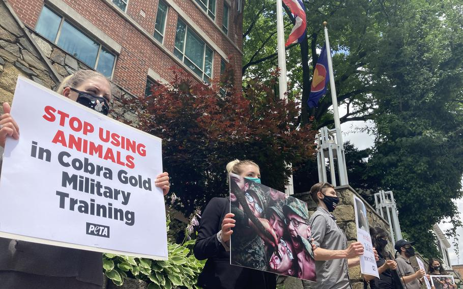 People for the Ethical Treatment of Animals protested outside the embassy of Thailand in Washington, D.C., on Thursday, June 3, 2021. The animal-rights groupwants the U.S. military to stop the practice of killing king cobras during the military exercise Cobra Gold in Thailand.