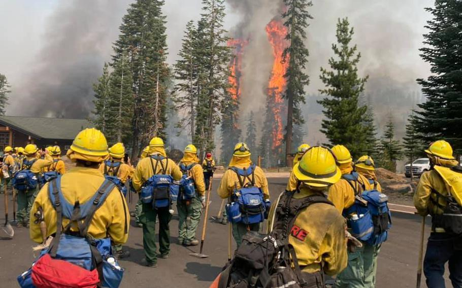 Trees burn within eyesight of a California National Guard hand crew with Joint Task Force 578 during the Dixie Fire on Aug. 16, 2021, in northern California.