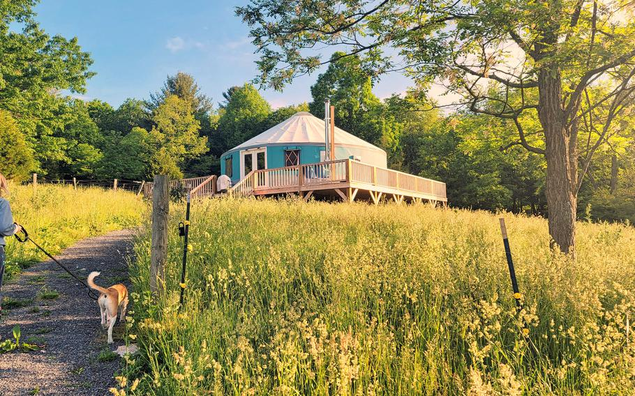 Yurts date from thousands of years ago but are now part of the glamping trend. Russell Prechtl and his husband, Craig Freeman, built Solar Solitude last year and started renting out the West Virginia property in March.