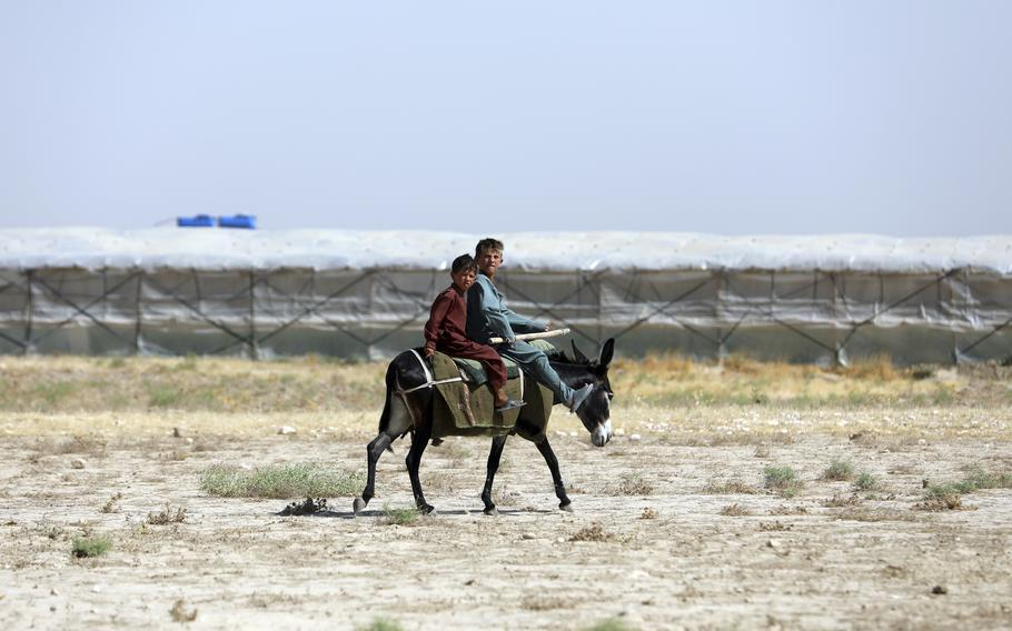 Boys travel on a donkey on the outskirts of Mazar-e-Sharif province north of Kabul, Afghanistan, Thursday, July 8, 2021.