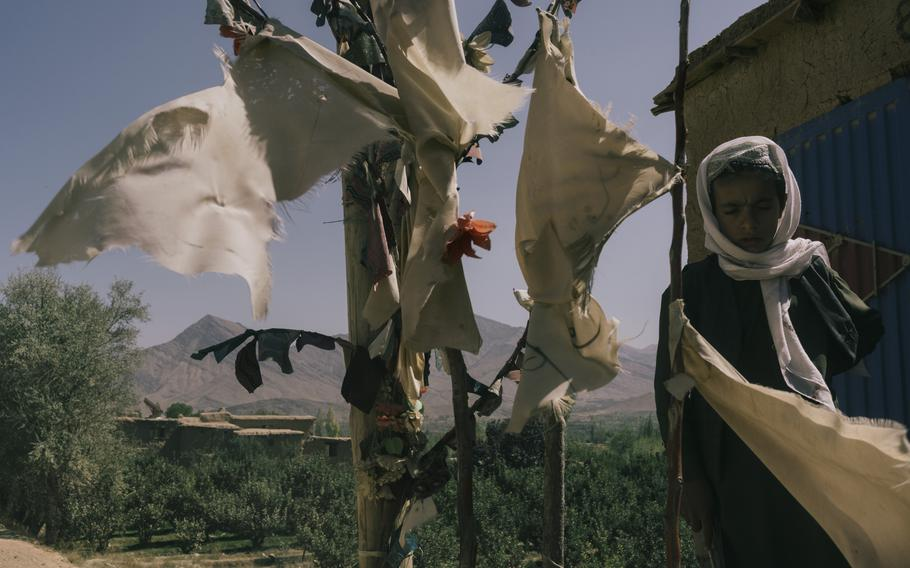 White flags in the village of Sinzai, Afghanistan, mark the spots where U.S. airstrikes killed Afghans.