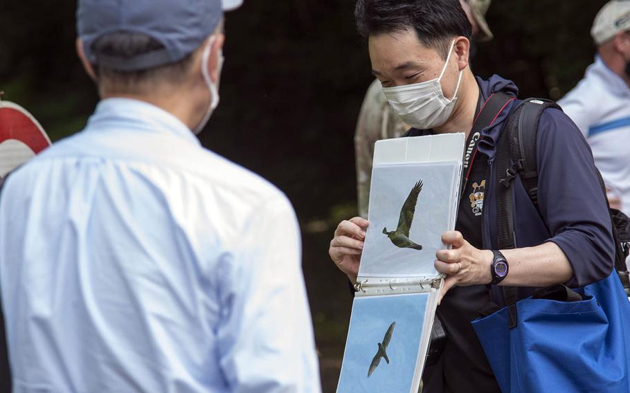 """Nearly 40 goshawks nest at Tama Hills, a U.S. military recreation area in western Tokyo, according to guides who hosted an """"eco tour"""" there on Wednesday, May 26, 2021."""