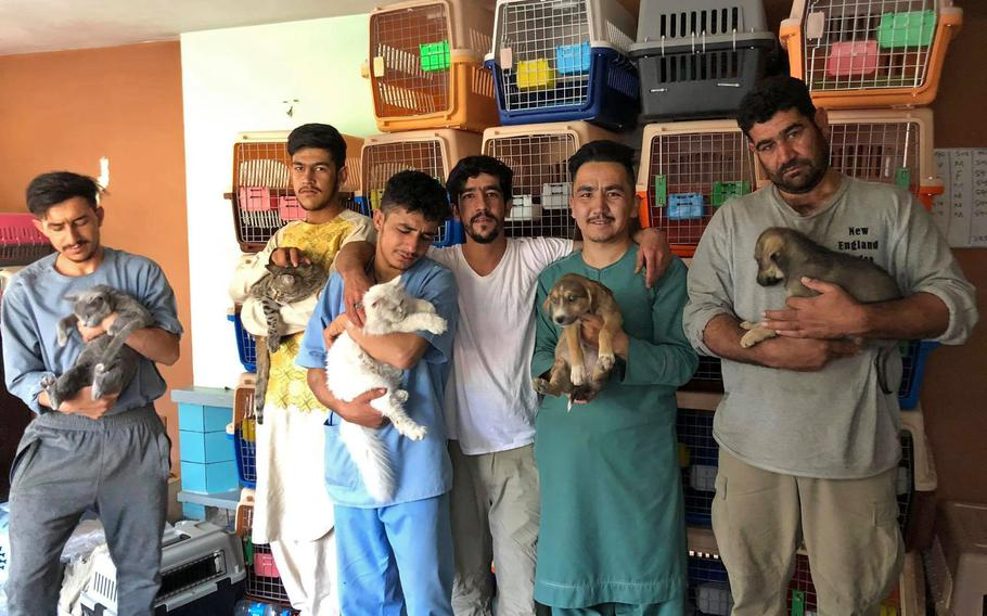 Afghans pose with rescued animals at the Kabul Small Animal Rescue clinic.