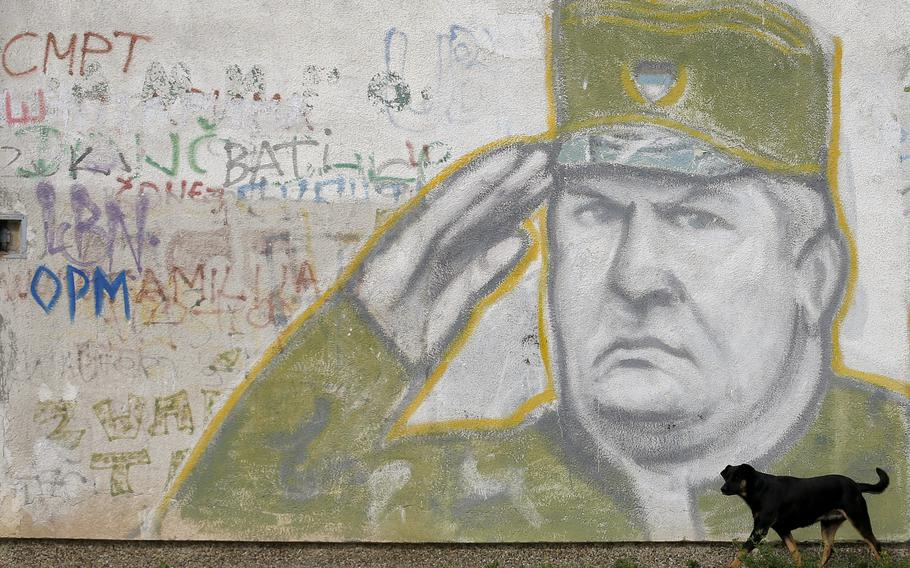A dog walks past a mural depicting former Bosnian Serb Gen. Ratko Mladic decorating a the wall of an apartment building in Belgrade, Serbia, on Nov. 7, 2017.  U.N. judges on Tuesday, June 8, 2021, are set to deliver their final ruling on the conviction of former Bosnian Serb army chief Radko Mladic on charges of genocide, war crimes and crimes against humanity during Bosnia's 1992-95 ethnic carnage.