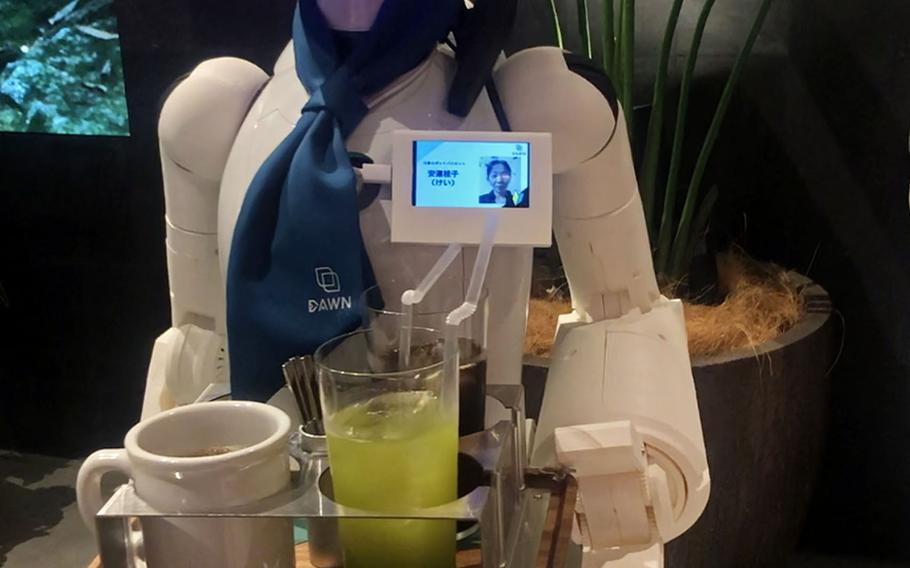 Standing between 1 and 4 feet tall, the robots at Dawn Avatar Robot Café in Tokyo feature cameras, a microphone and a speaker to allow their operators to remotely interact with customers.