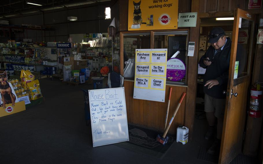 An agriculture supply shop has completely run out of mouse bait and traps in Wellington, NSW, Australia, on May 28, 2021.