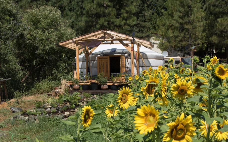 Colin Sternagel, the founder of SunTime Yurts in Washington state, spent seven months living in Mongolia and imports the structures from the Central Asian country.