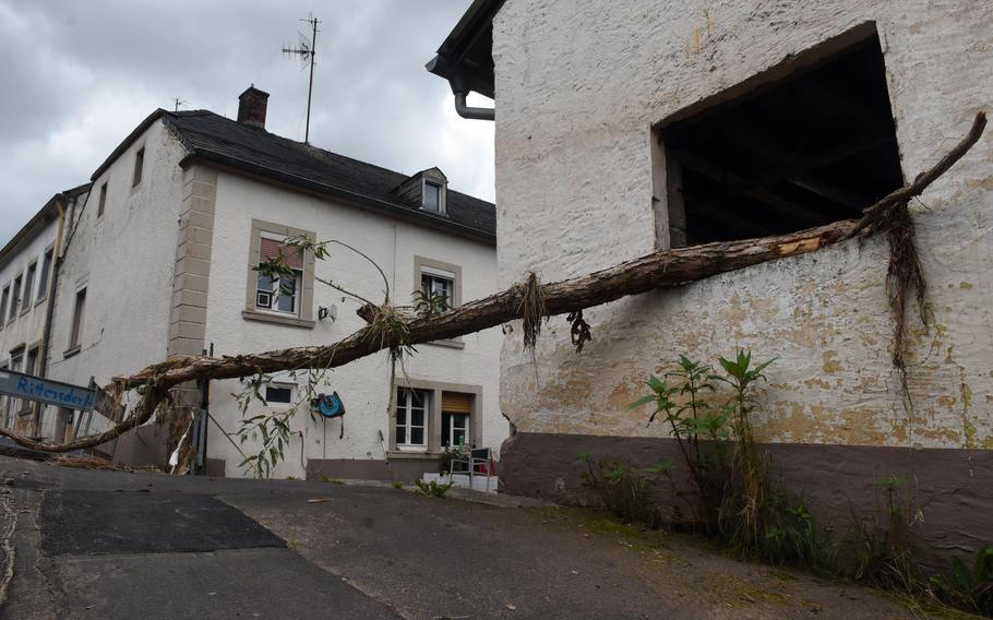 A tree sticks out from a window next to the Nims River in Rittersdorf, Germany, on July 31, 2021. The river rose to more than 6 feet and damaged homes and buildings along the river earlier last month, in flooding that residents say was the worst in their lifetime.