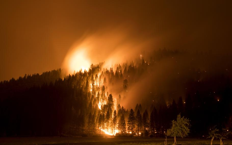 Flames consume trees during the Dixie Fire in Genesee, Calif., on Aug. 21, 2021.