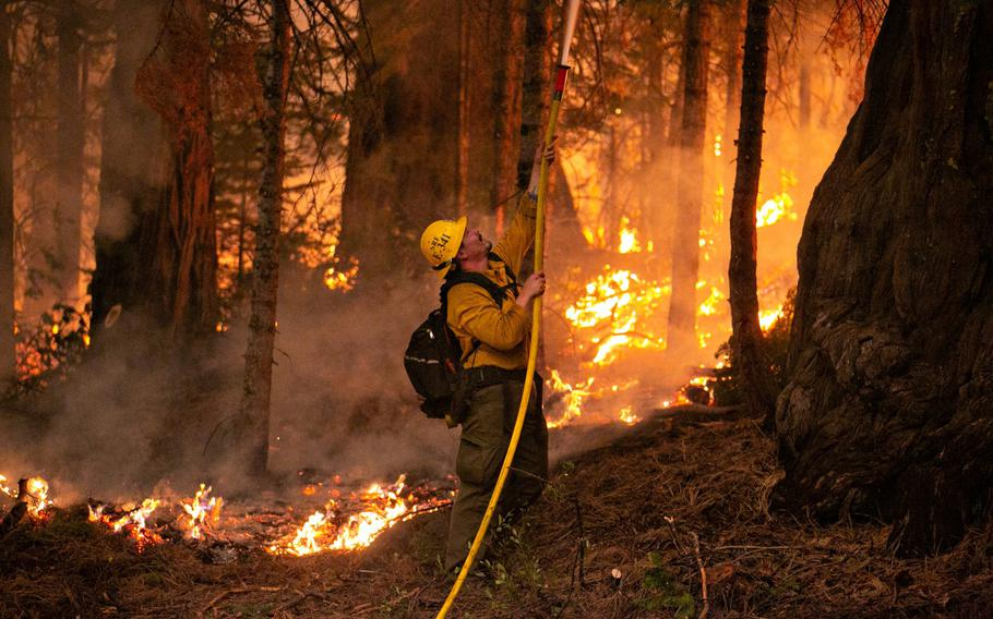 A firefighter works a control burn to head off a spot fire that started on a ridge behind a business on Hwy. 50 on Saturday, Aug. 28, 2021, in Strawberry, Calif. Firefighters continue to tackle the Caldor fire as it creeps closer to South Lake Tahoe.