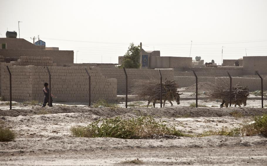 A man walks with two donkeys outside the Zaranj Airfield, Nimruz province, Afghanistan. The Taliban overran Zaranj in western Afghanistan Aug. 6, 2021, in the first capture of a provincial capital since the U.S. began leaving the country this year, local officials and the militant group said.