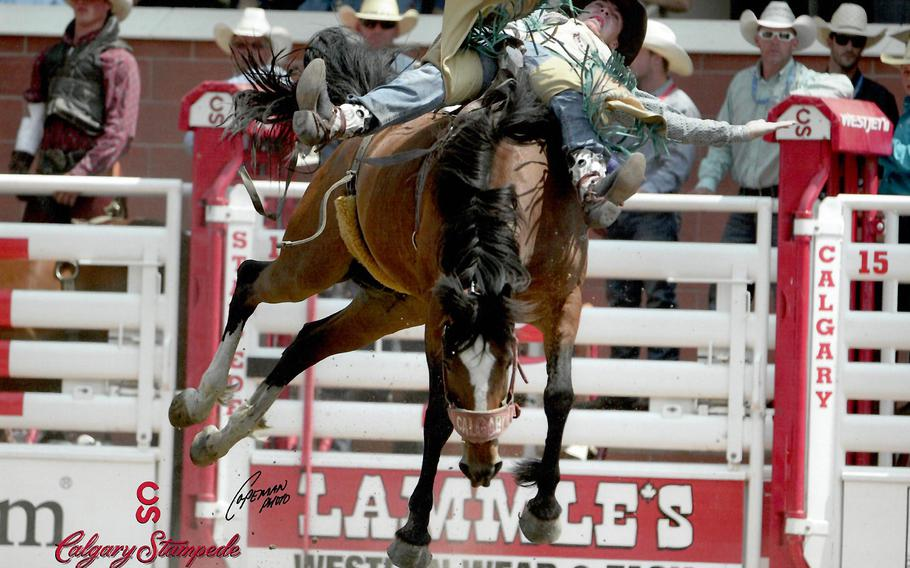 Jaden Clark competes in the 20 and under bareback riding category at the July 2015 Calgary Stampede in Calgary, Alberta. Clark, a specialist with the Nebraska Army National Guards 1-134th Cavalry Squadron, is looking to earn his spurs, a rite of passage for cavalry scouts.