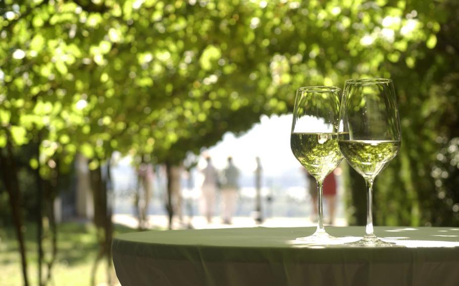 Among the wine festivals this week is the Zeller Schwarze Katz Festival in Zell, Germany.