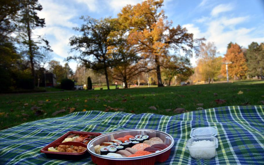 A doubled-up sushi combination platter and a fried chicken bento box from Hashimoto in Saarbruecken, Germany, ready to eat at a picnic in the city's German-French Garden.