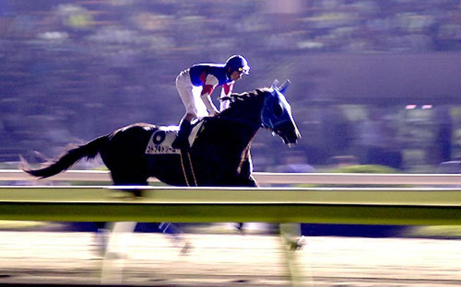 A jockey and his mount warm up before the eighth race at Tokyo City Keiba.