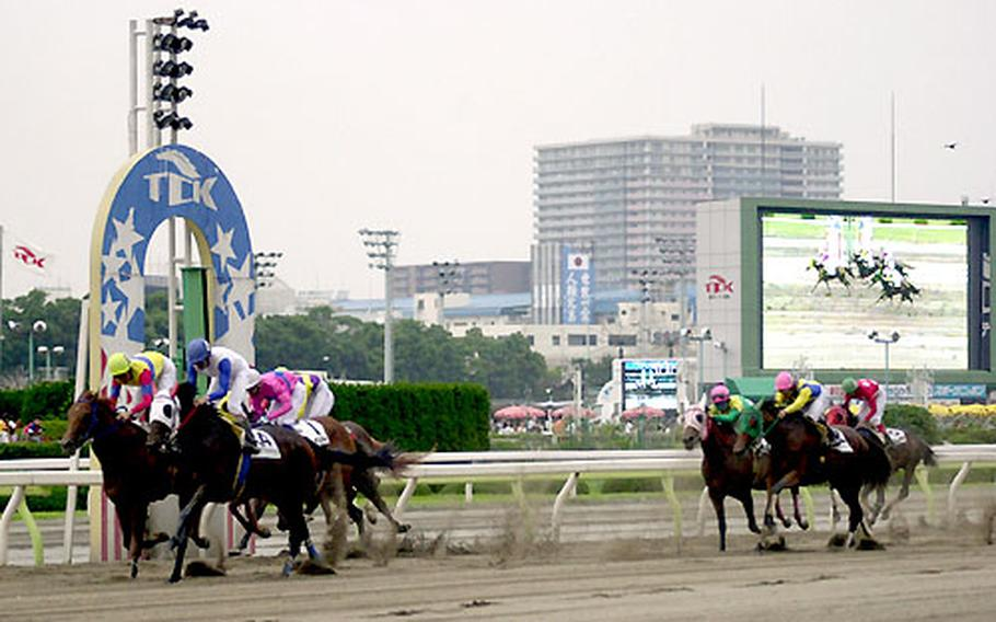 A pack of riders crosses the finish line during the third race.