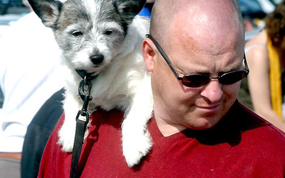 A man and his dog look for bargains at a car boot sale in Cambridge, England.
