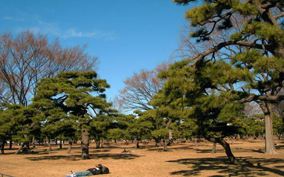 Japanese salary men lay out in the sun during their lunch break on the park grounds outside the Imperial Palace.