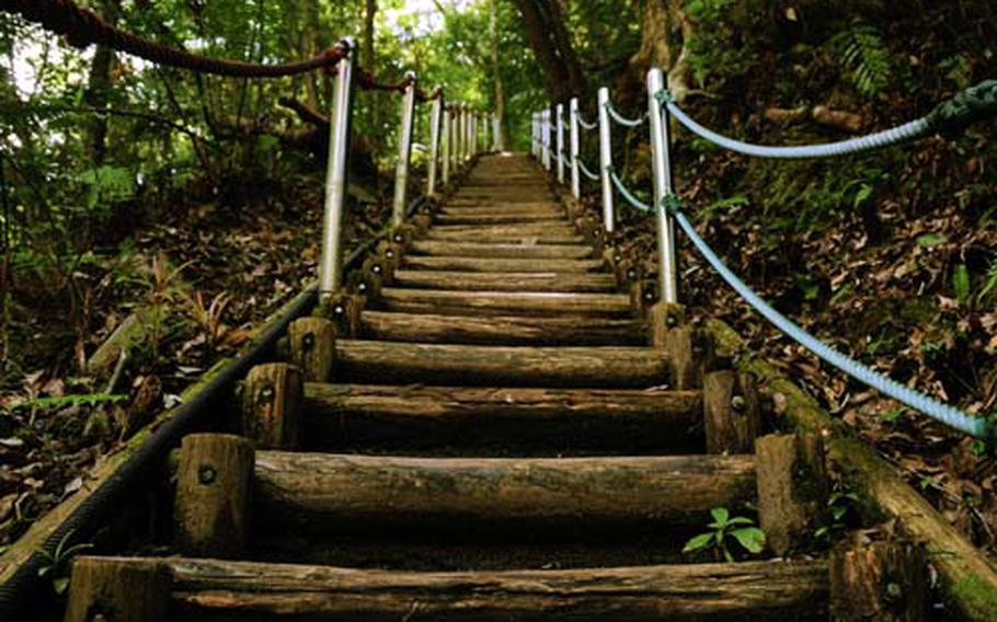 There are 76 steps straight up and then another 76 or so down once you got to the top of Hiji Falls on Okinawa. The steps are very sturdy and were put in relatively recently, making this trail to the falls accessible to a wide age range.