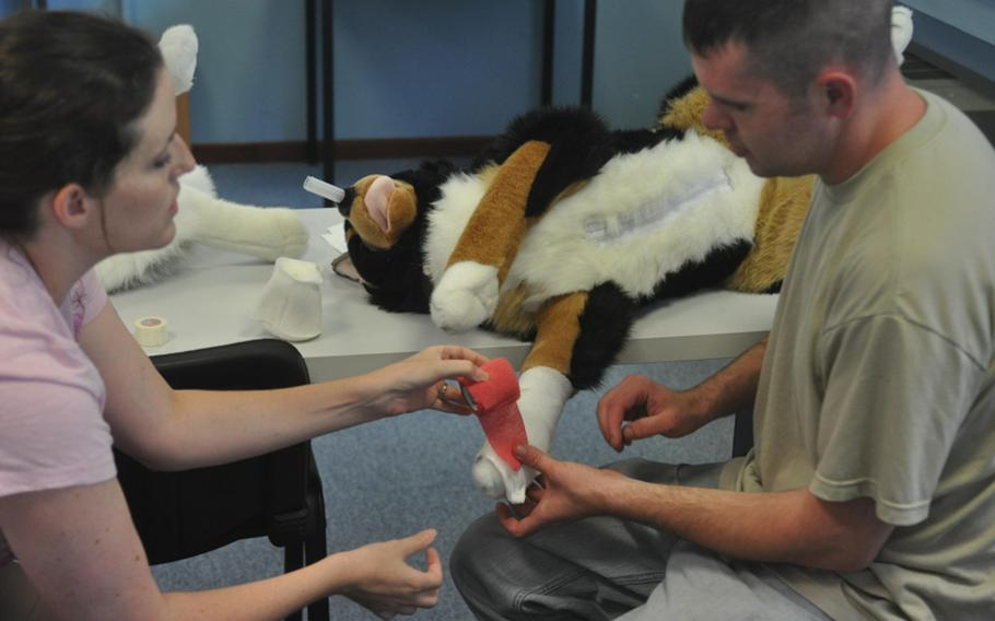 Nicole Robarge, a civilian veterinarian at Aviano Air Base in Italy, helps Philip Brown, a staff sergeant stationed at Aviano,  apply a bandage to a dummy dog during a class on applying first aid to dogs sponsored by the American Red Cross.