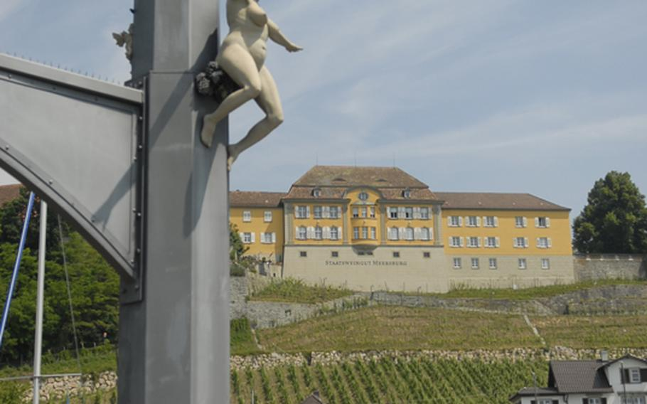 Vineyards are an important part of the landscape in Meersburg, which is known for its wine. In the background is the New Castle - a palace built in the 18th century for the prince bishops of Constance.