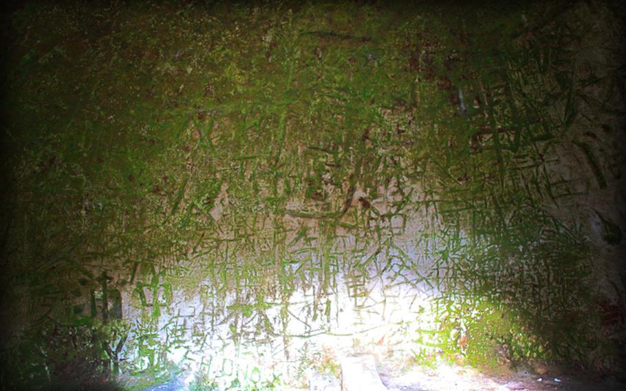 A rare moss called Hikarigoke grows inside many caves at the Yoshimi Hyakuana tombs.