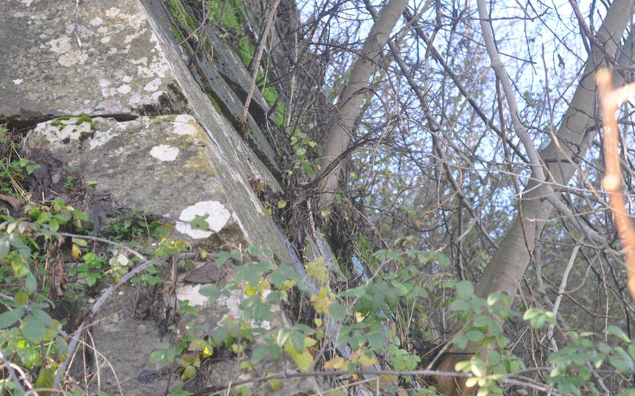 Much of the fortifications surrounding the town of Palmanova is being reclaimed by nature as evidenced in this picture that shows trees growing out of the walls. Palmanova was fortified by the Venetians, later occupied by Napoleon and part of the front during World War I.