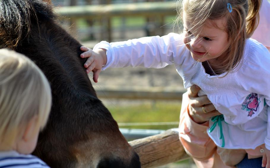 Visitors pet a Shetland pony in the demonstration farm of the zoo and garden. The farm also features such animals as wild boars, dwarf goats and many breeds of chickens.