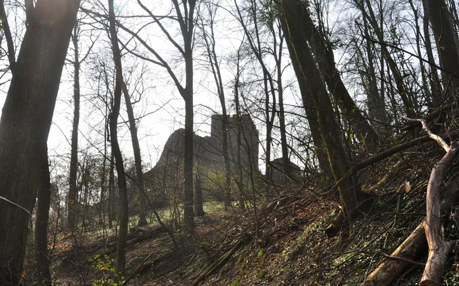 Just outside the castle ruins, which sit on the eastern edge of the Palatinate Forest in Germany. The forest has several hiking trails, ranging from three to six kilometers, all of which lead to the ruins.