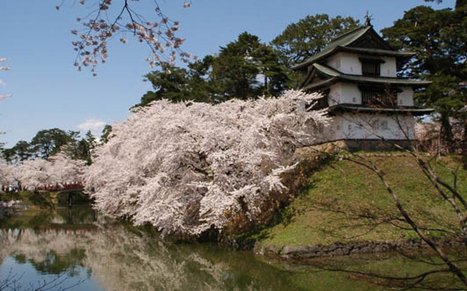 Although many cherry blossom festivals in Japan were canceled after the massive earthquake, officials in Hirosaki City, Japan, decided to have cherry blossom festival this year. They will contribute donations festival entrance fees to charity. See about 2,500 trees around the castle and moat from April 23 through May 5. The blooms will be illuminated sunset to 11 p.m.