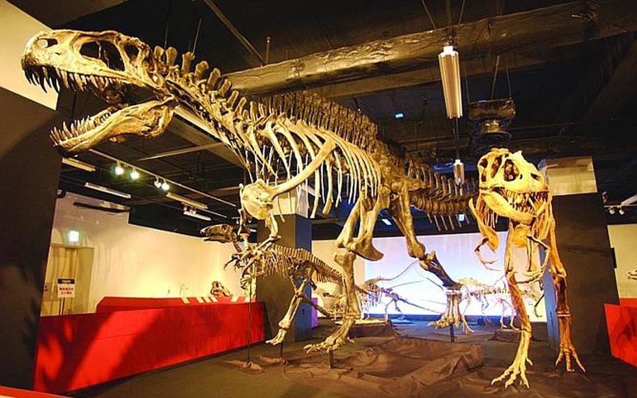 See The Dinosaurs Exhibition at Tokyo Tower, now through June 12, 10 a.m.-6 p.m. at Tokyo Tower Exhibition Hall (1st floor).
