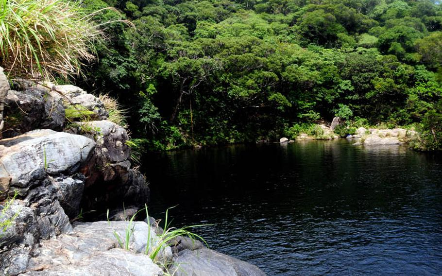 The large swimming hole at Aha Falls, Okinawa, offers clear and cool dark waters surrounded by lush tropical rainforest.