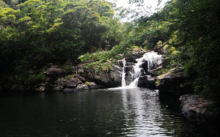 Aha Falls offers water enthusiasts a chance for relaxing in the cool, dark waters of the swimming hole or swimming across to relax on the rocks on the side of the waterfall.