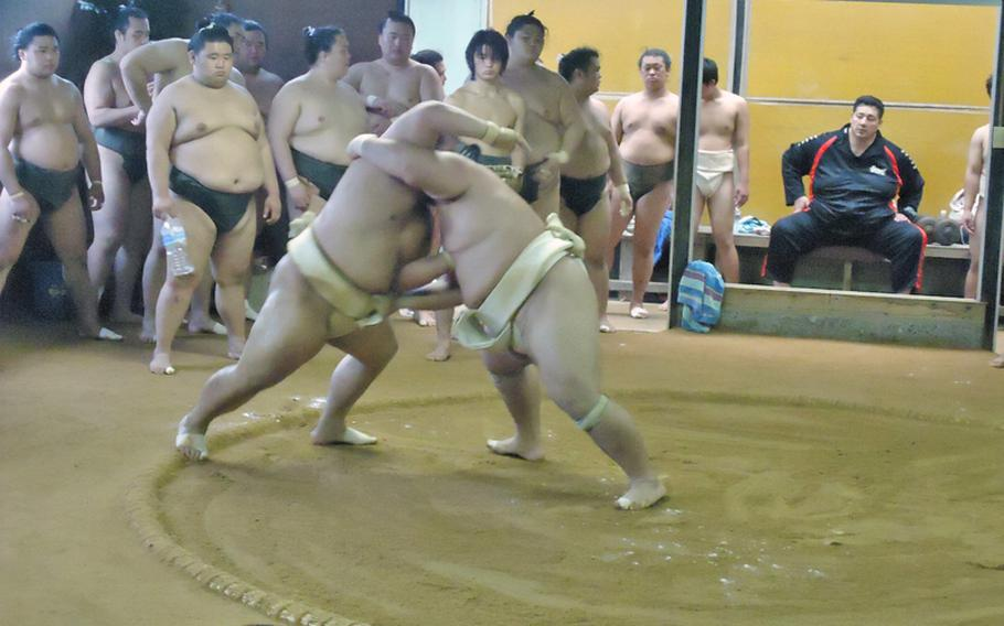 Ozeki Kotoshogiku, right, gains the upper hand in a training match with an opponent at the Sadogatake sumo wrestler stable in Fukuoka recently.