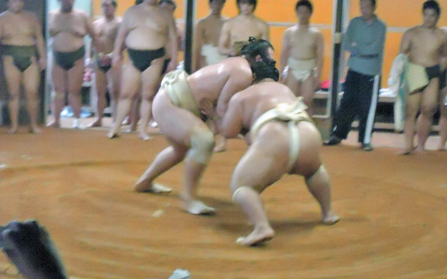 The two famed ozeki Kotooshu, left, and Kotoshogiku from the Sadogatake sumo wrestler stable in Fukuoka square off during a recent training session. Here, Kotooshu meets Kotoshogiku with a solid and thundering shoulder.