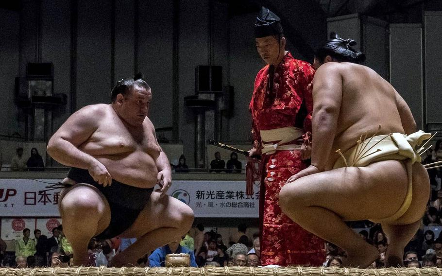 Sumo opponents face each other, crouch and stare in a mental battle before the physical contest.