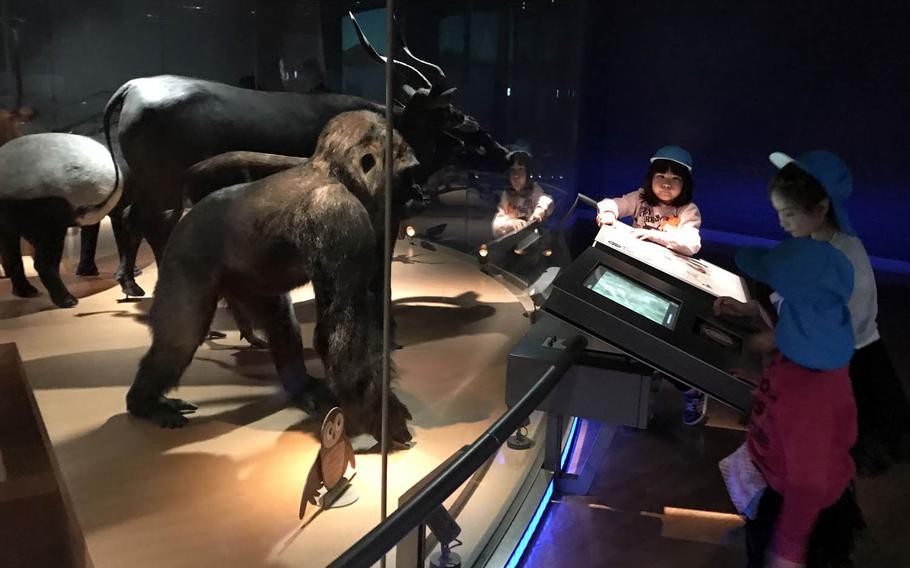 Children explore the touchscreens explaining various animals on display at the National Museum of Nature and Science in Tokyo.
