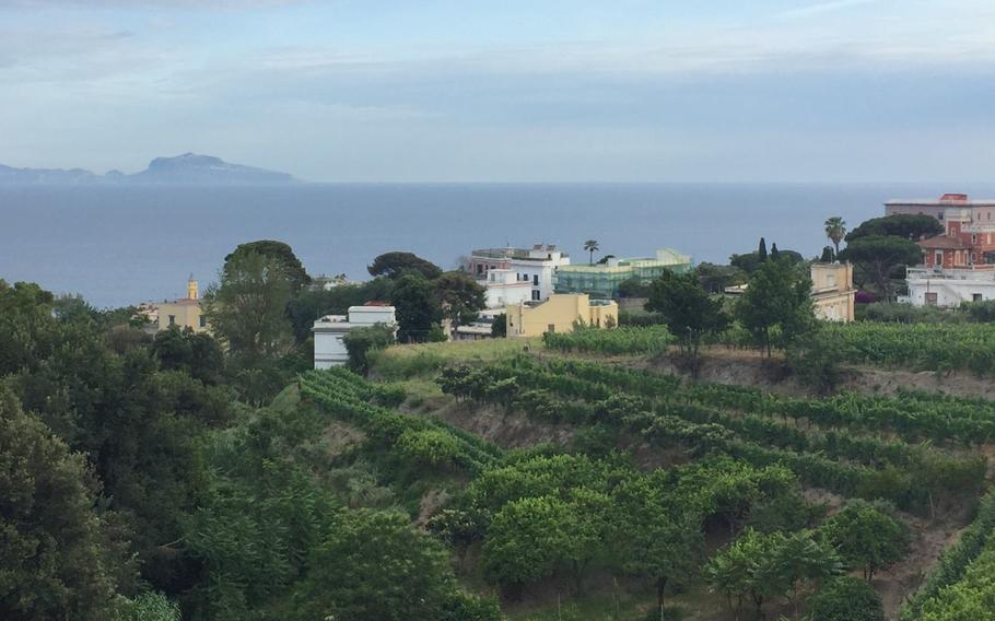 A stunning view of the Mediterranean near Ristorante I Primi, which moved from Mergellina last year to a hilltop venue in the Posillipo area.