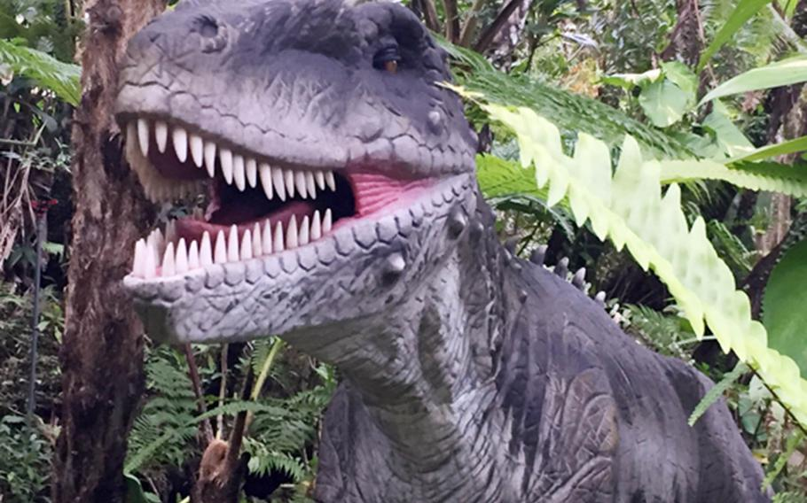 The Allosaurus and its rows of pointed teeth are just one of many attractions at Dino Park in Okinawa, Japan.