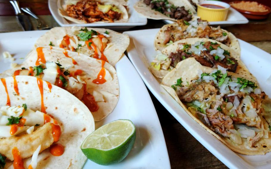 Four plates with three tacos each at the Amigos Mexican Restaurant in Bury St Edmunds, England. Every Tuesday is two-for-one tacos and burritos.