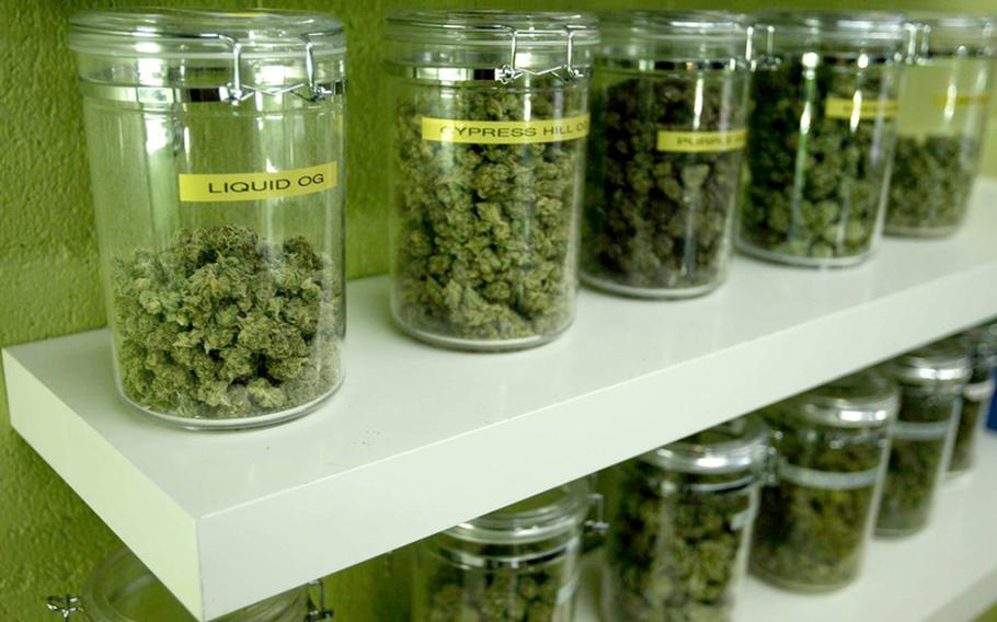 Medicinal marijuana buds are made available for patients at a medical marijuana dispensary in Long Beach, California on March 21, 2012.