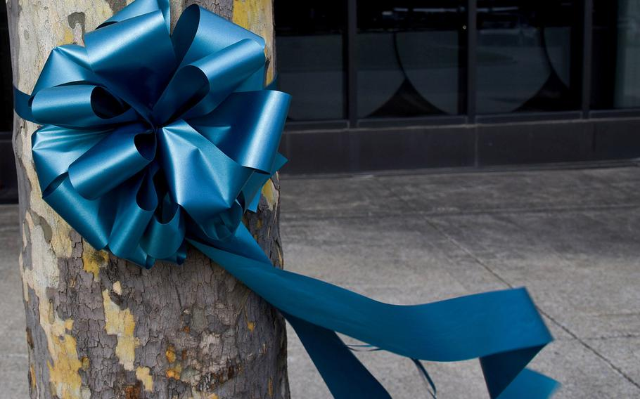A teal ribbons is tied to a tree at Stewart Air National Guard Base, N.Y. April 8, 2018, to help raise awareness of sexual assault.