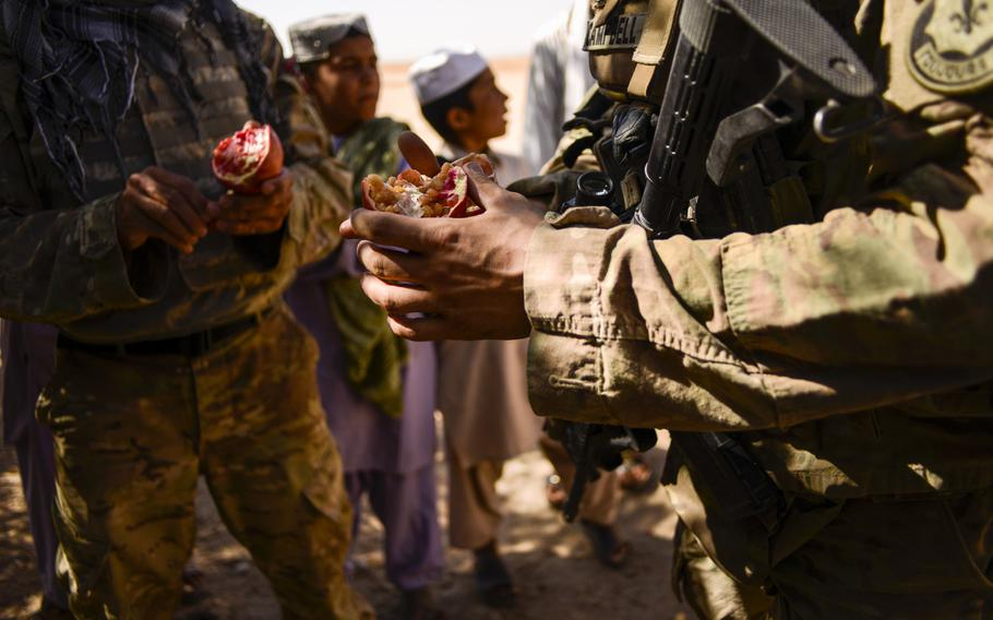 Capt. Chad Campbell eats a pomegranate grown in the desert of southern Afghanistan's Kandahar province just north of Forward Operating Base Pasab during a partnered patrol with Afghan police on Oct. 21, 2013.