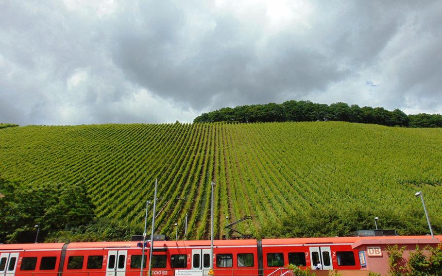 Away from the distinctive waterfall in the city center, the area around Saarburg, Germany, offers typically beautiful German scenery, including this passenger train passing by a hilly vineyard.